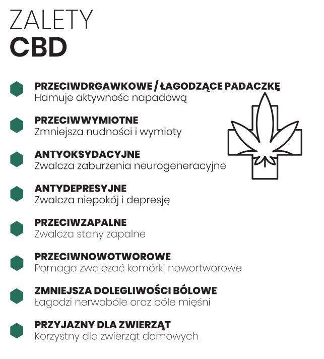 Jaki jest wpływ CBD na organizm?